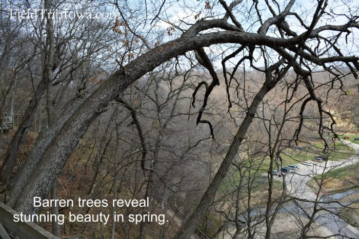 Ledges State Park in the spring