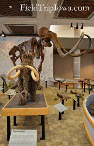 State Historical Museum of Iowa Mammoth