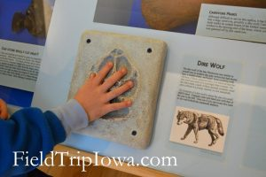 State Historical Museum of Iowa child's hand on display
