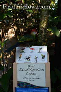 Reusable Bird Identification cards at Discovery Cove Florida