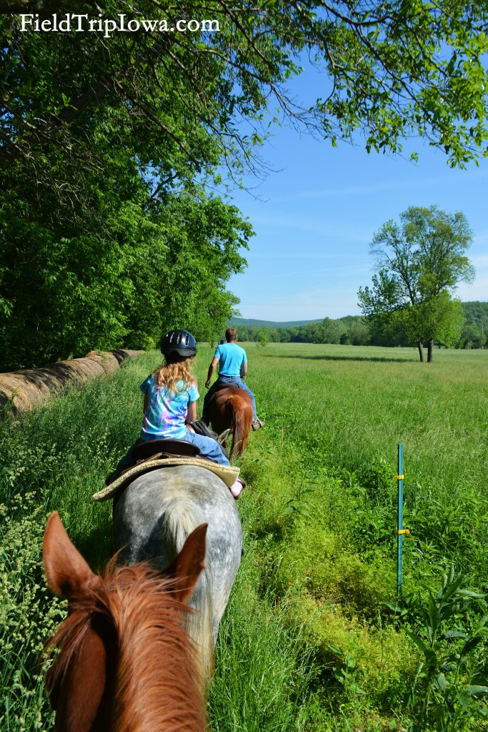 Trailride along a field at Arcadia Valley Stables by Plain & Fancy BB.