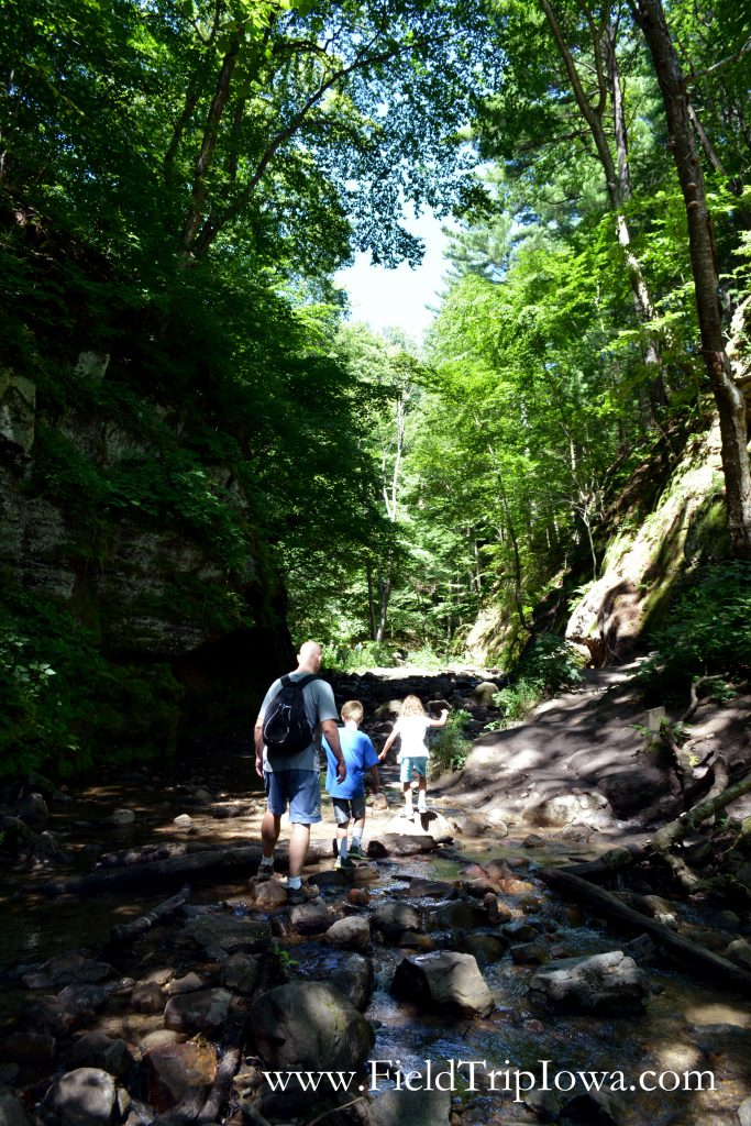 Childre walk up stream at Parfrey's Glen Natural Area near Devil's Lake Wisconsin