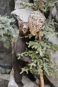 Cabelas-Kansas-City-bear