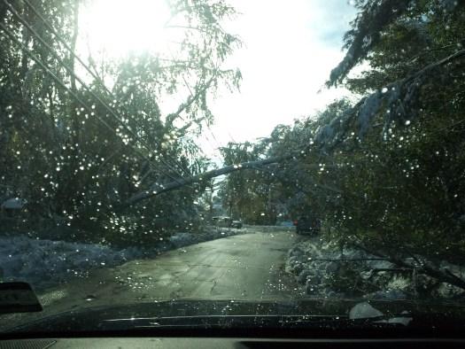 Snowtober damage