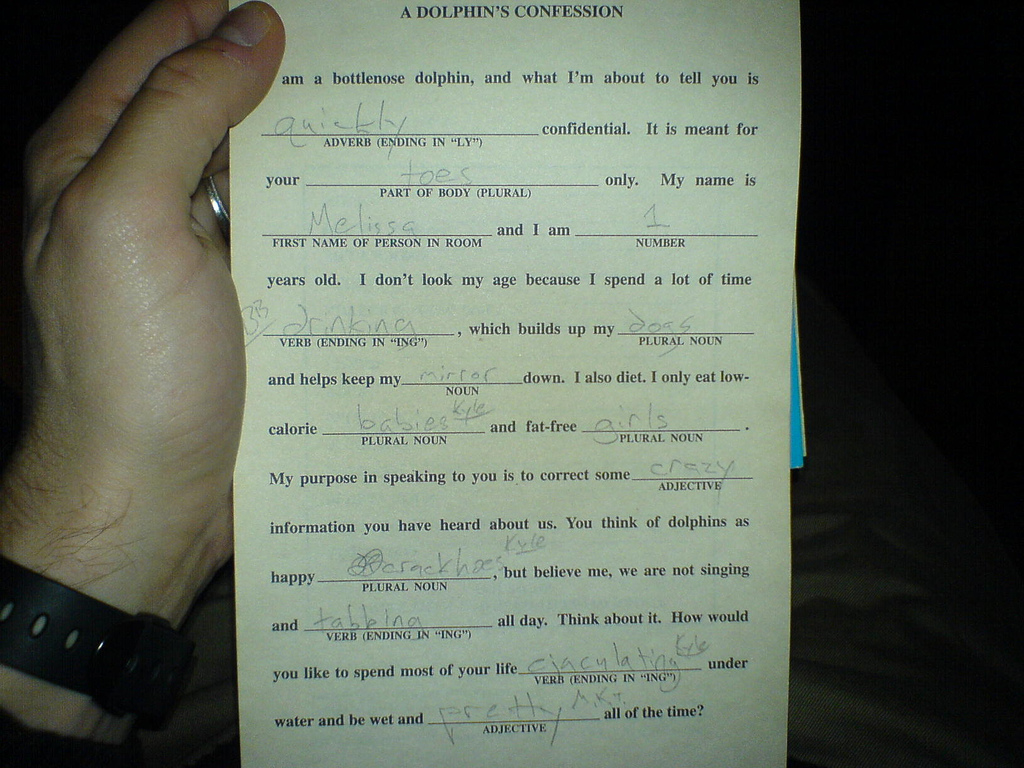 Mad Libs Vacation Answers