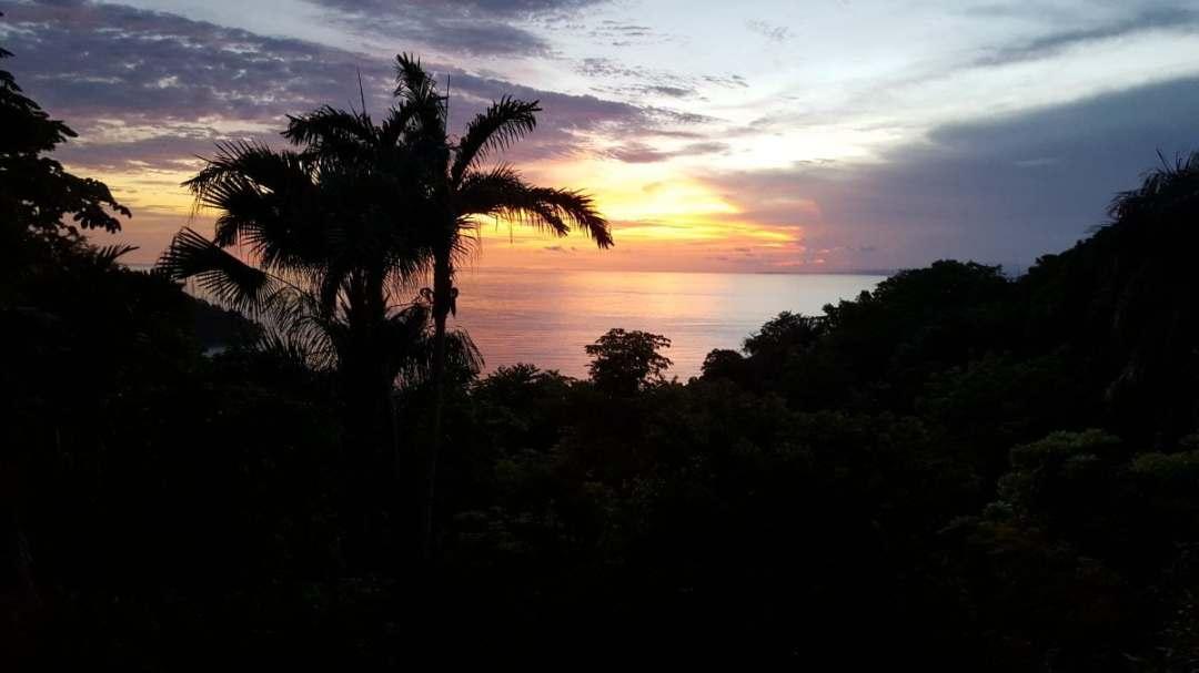 Costa Rica Wellness and Adventure Getaway