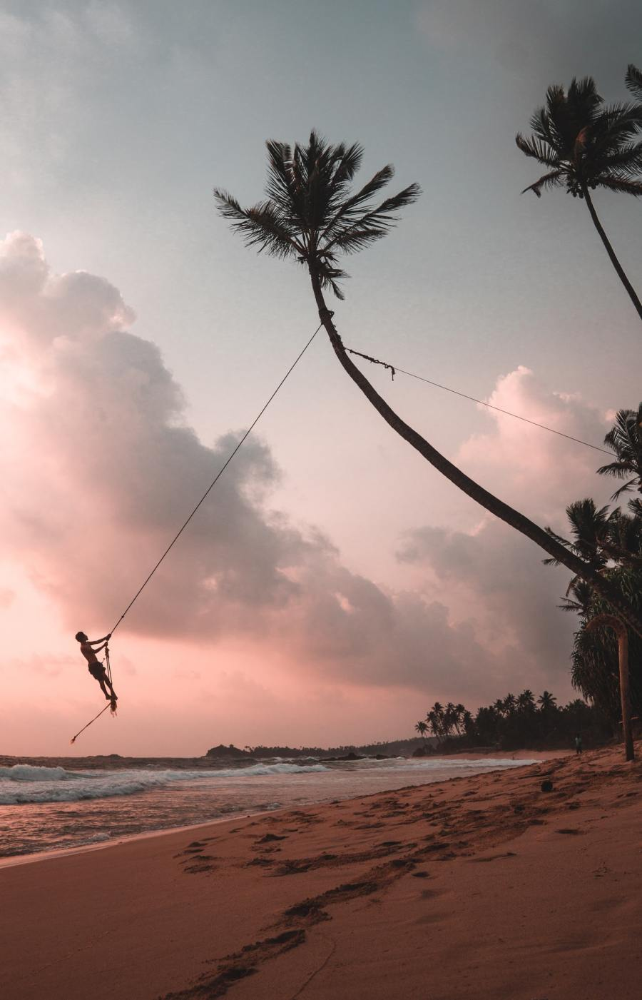 person on a tree swing along beach
