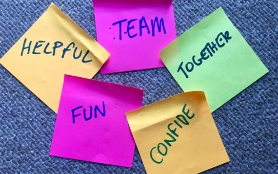 Digital skills: Inspiration - Terrific colleagues