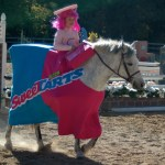 Halloween Horse Show Fiesta Farm
