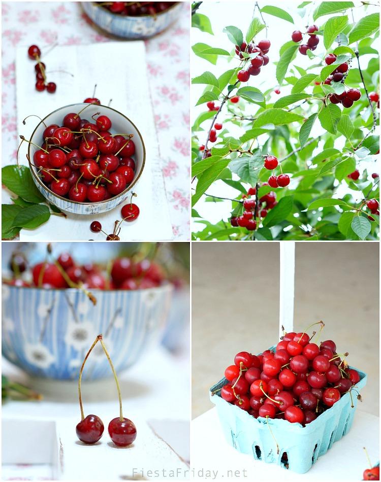 cherry picking season | fiestafriday.net
