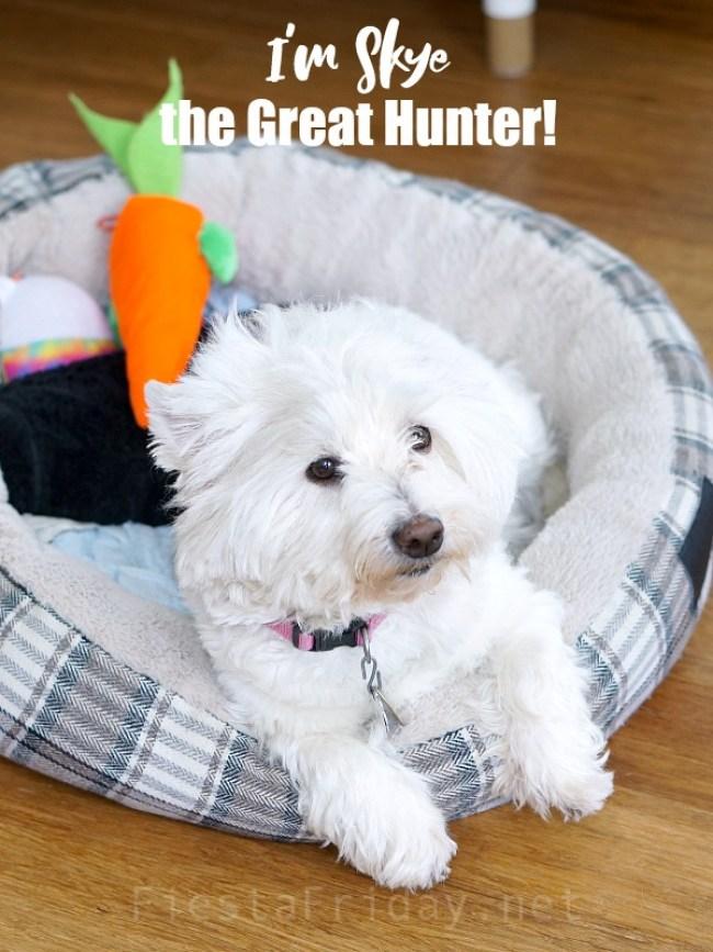 Skye the Great Hunter | FiestaFRiday.net