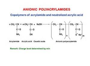 Anionic polymer