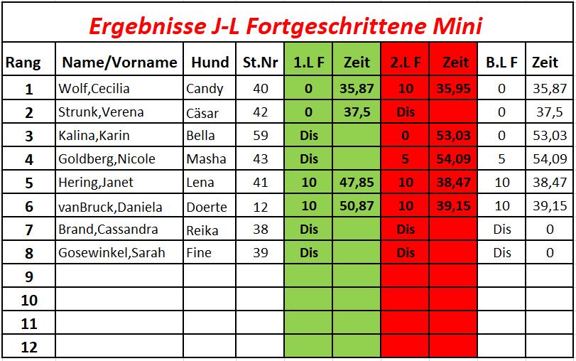 7J-L. Fortg,Mini