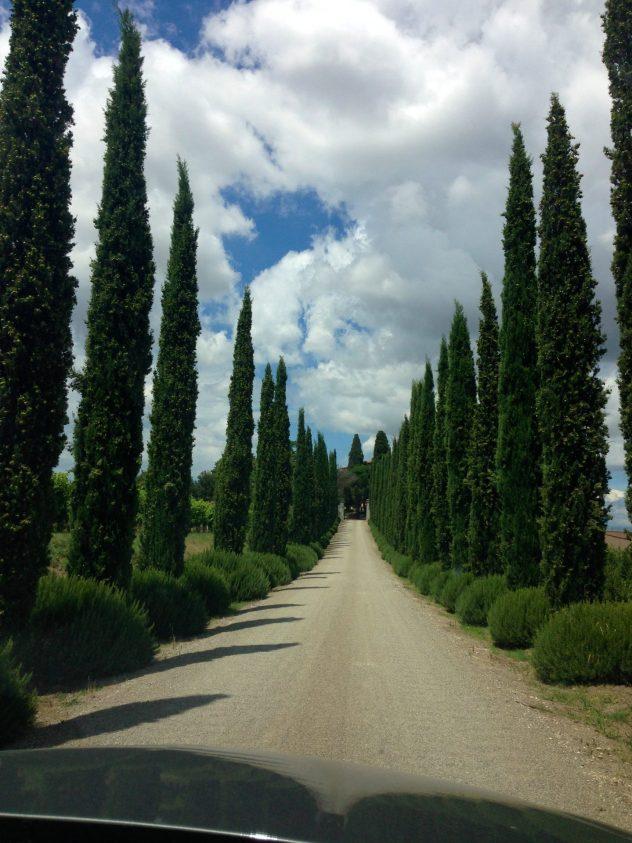 Driving up to Villa Loggia winery in Cortona, Tuscany.
