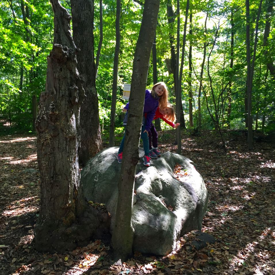 Scarsdale Nature Center