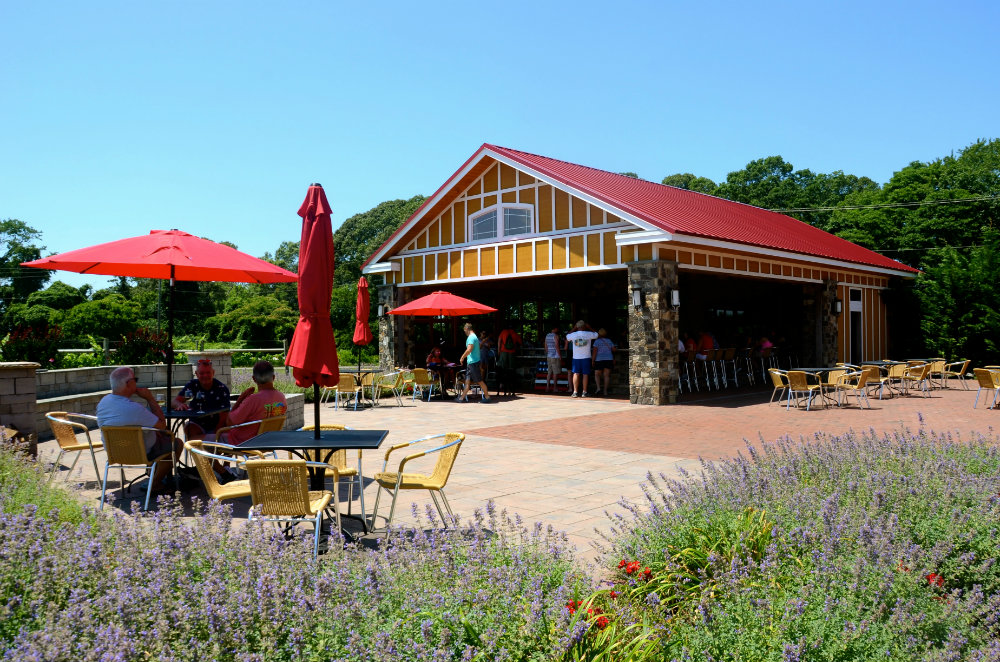Exploring Willow Creek wine vineyards in Cape May, New Jersey.