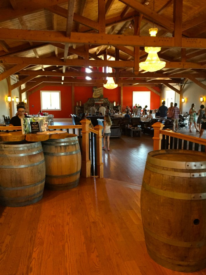 Admiring the inside of Willow Creek wine vineyards in Cape May, New Jersey.