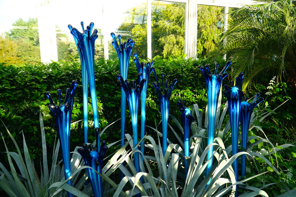 Images of the Chihuly exhibition at the New York Botanical Garden.