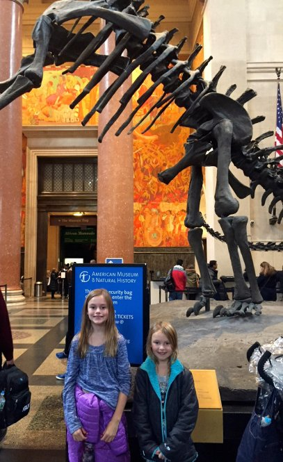 Museum of Natural History for 24 hours in New York City travel fix