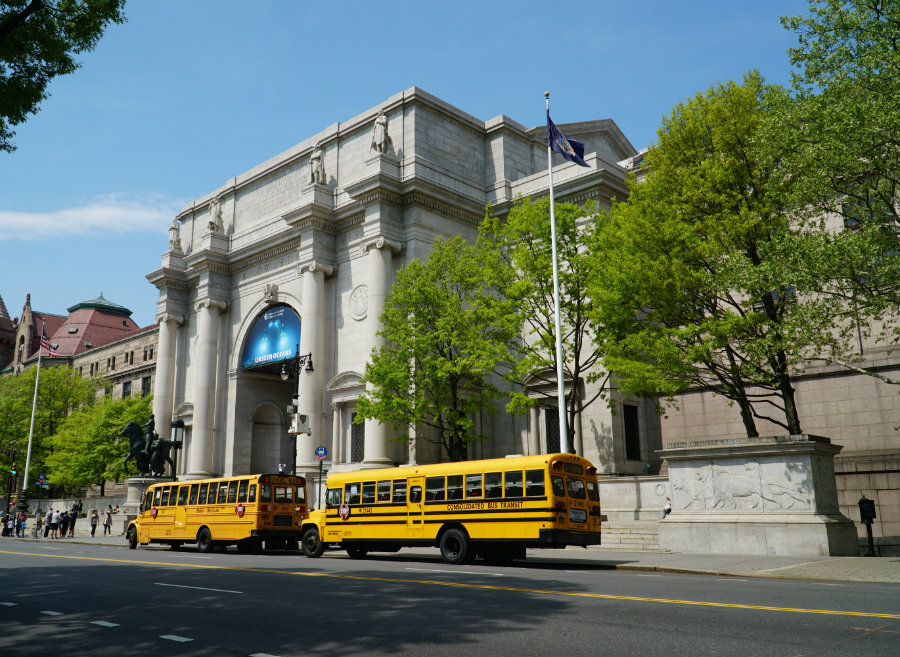 Museum of Natural History is one of the best family friendly museums in New York City