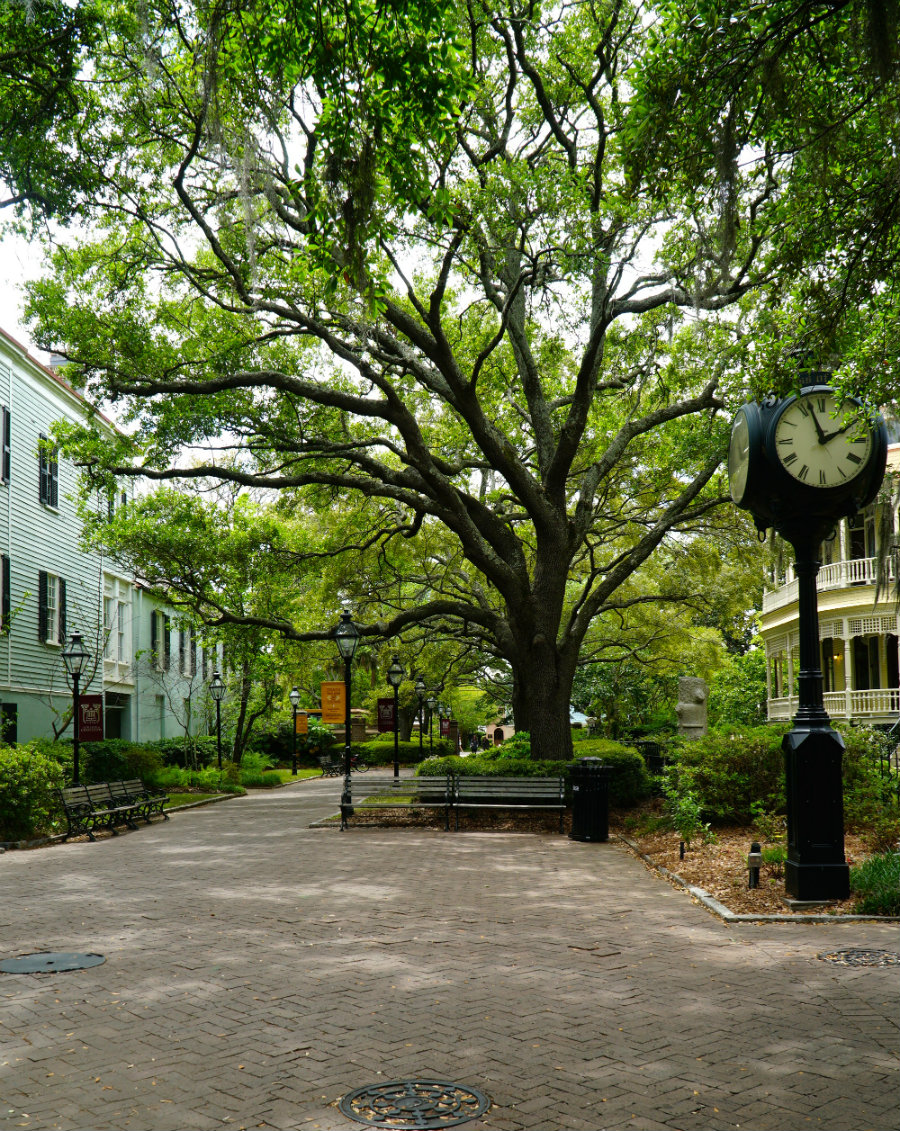 Charleston Getaway includes a visit to the College of Charleston campus