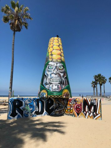 Venice-Art-Walls-Venice-Beach