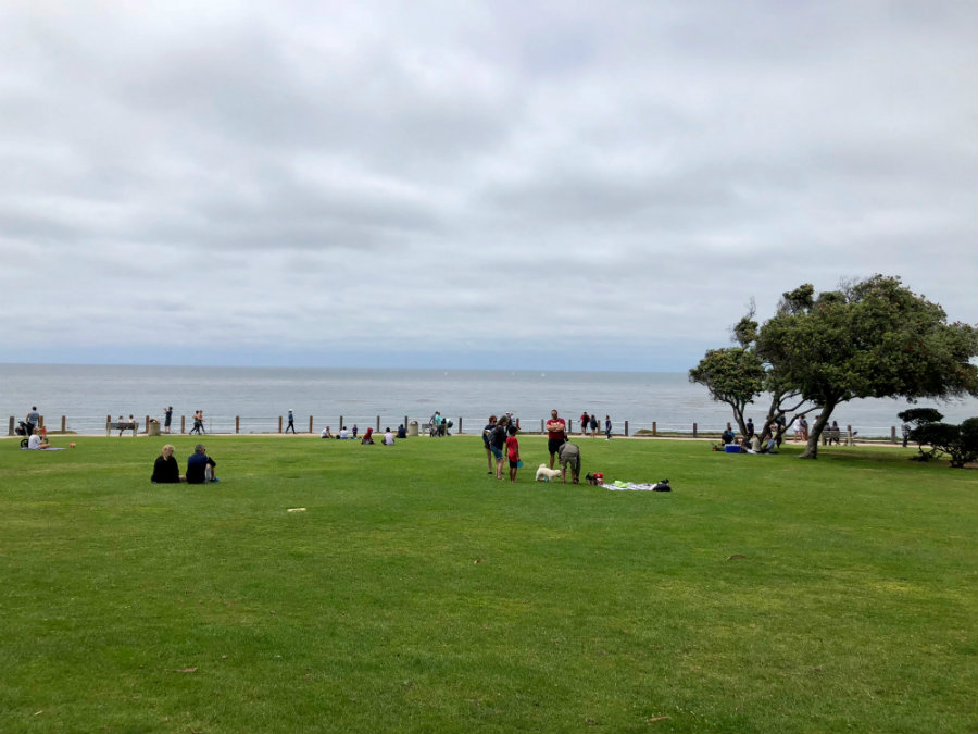 Things to do in La Jolla, Scripps Park