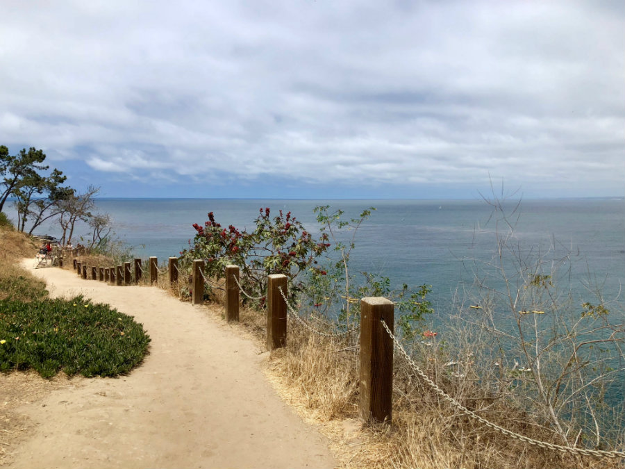 La Jolla Coastal Path Walk