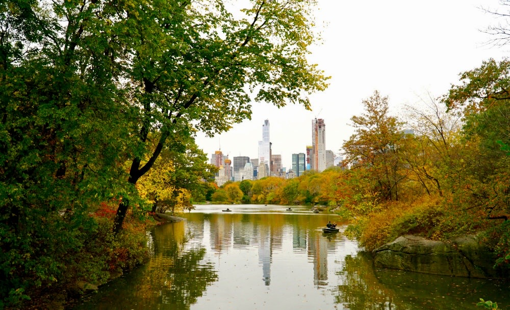 Favorite New York City Parks