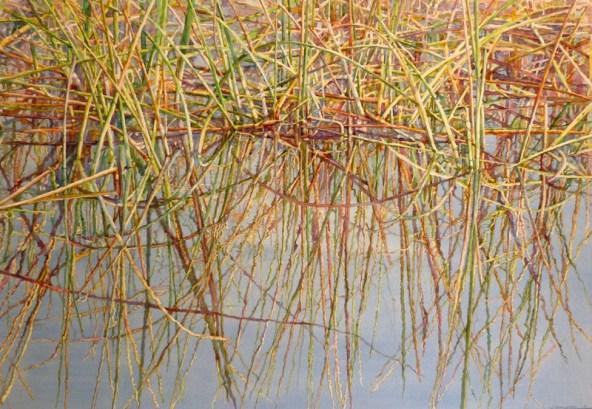 Nature's Patterns, Aquarina transparent Watercolor