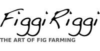 Figgi Riggi Brand logo