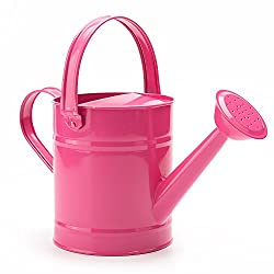 a photo of a pink watering can
