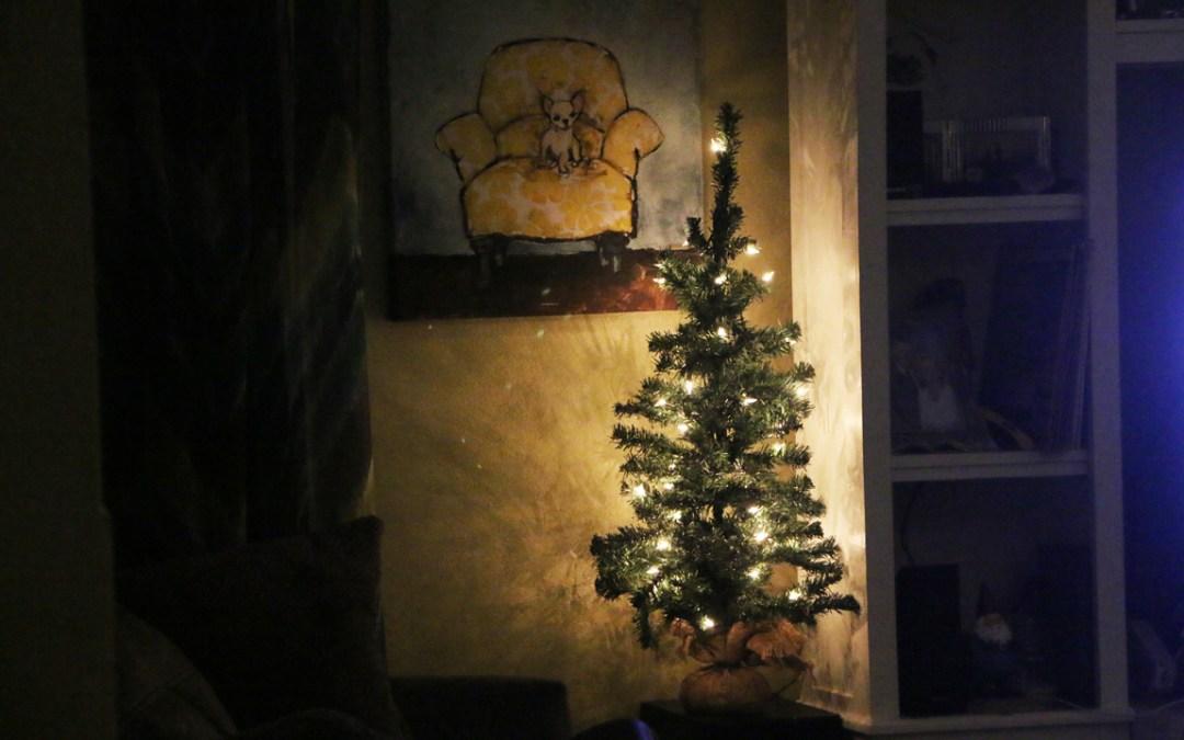 Merry Figgy Christmas
