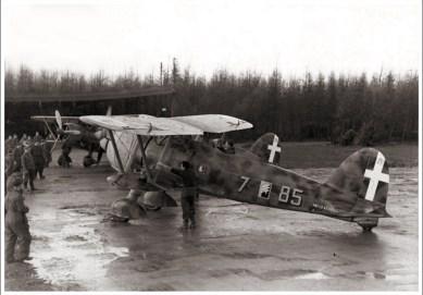 Falco-aSA-85-7Ursel-Belgium