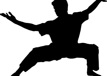 Karate vs Kung Fu for Self Defense & MMA