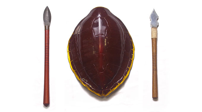 Shield Turtle Spear And