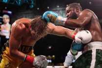 20210606 Showtime Mayweather V Paul Fight Night Westcott 1552