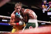 20210606 Showtime Mayweather V Paul Fight Night Westcott 1592