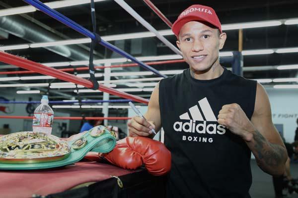 Miguel Berchelt Glove