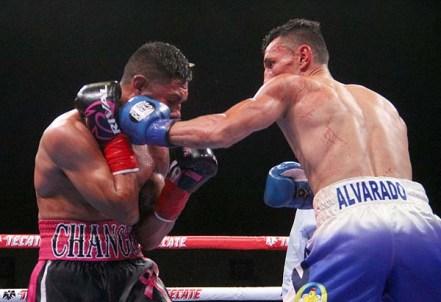 Alvarado Cancio26