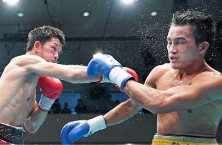 Ogawa Aldea15