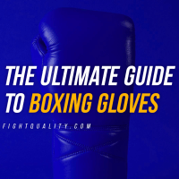 The Ultimate Guide To Boxing Gloves (Updated 2021)