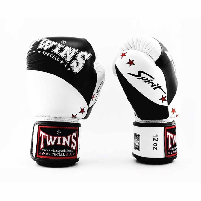 Twins Special BGVL-10 Boxing Gloves