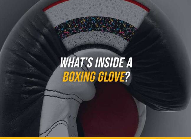 What's Inside A Boxing Glove?