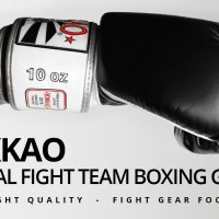 Fight Gear Focus - YOKKAO Official Fight Team Muay Thai Boxing Gloves (Video)
