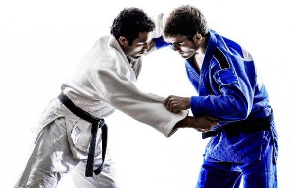 Pesquisa revela a dificuldade dos professores de Educação Física de Fortaleza em aplicar o Jiu-jitsu Brasileiro nas escolas