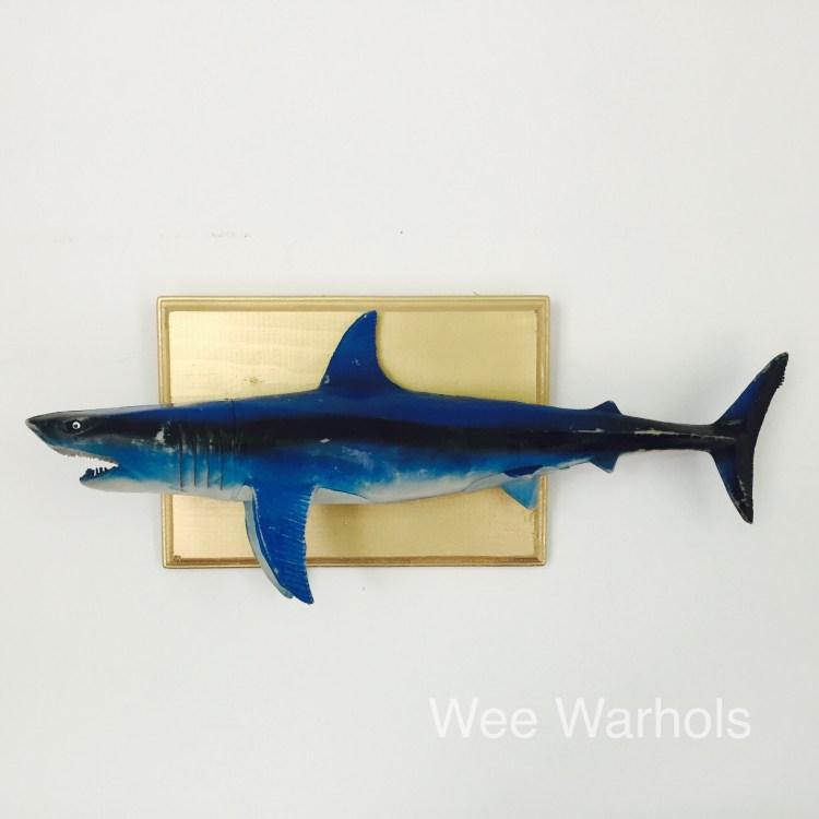 faux taxidermy, trophy fish, Wee Warhols, art class, austin TX