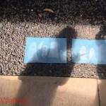 ghost, halloween, sun print, cyanotype, kid's art, Wee Warhols, Austin