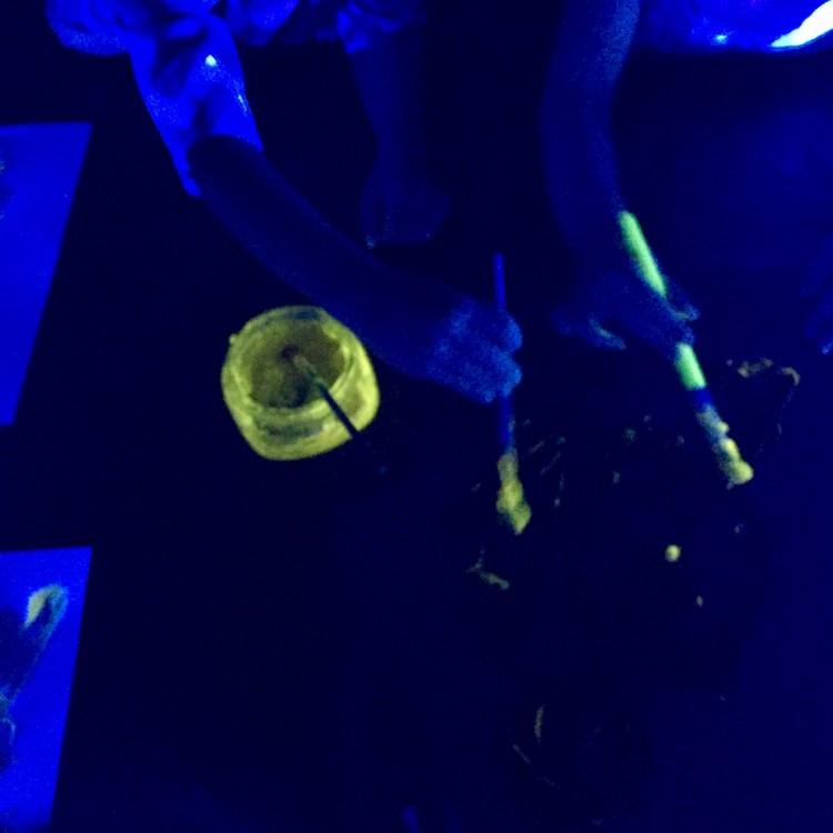 homemade glow in the dark paint, Wee Warhols, art class, austin, glow vitamins