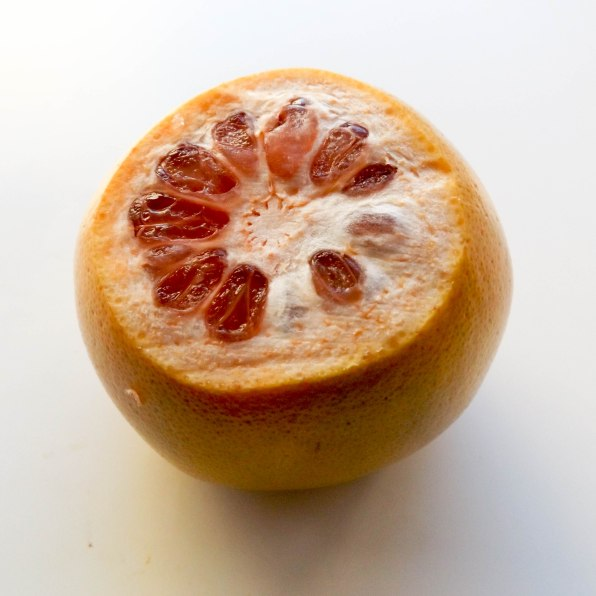 grapefruit (1 of 1)-10